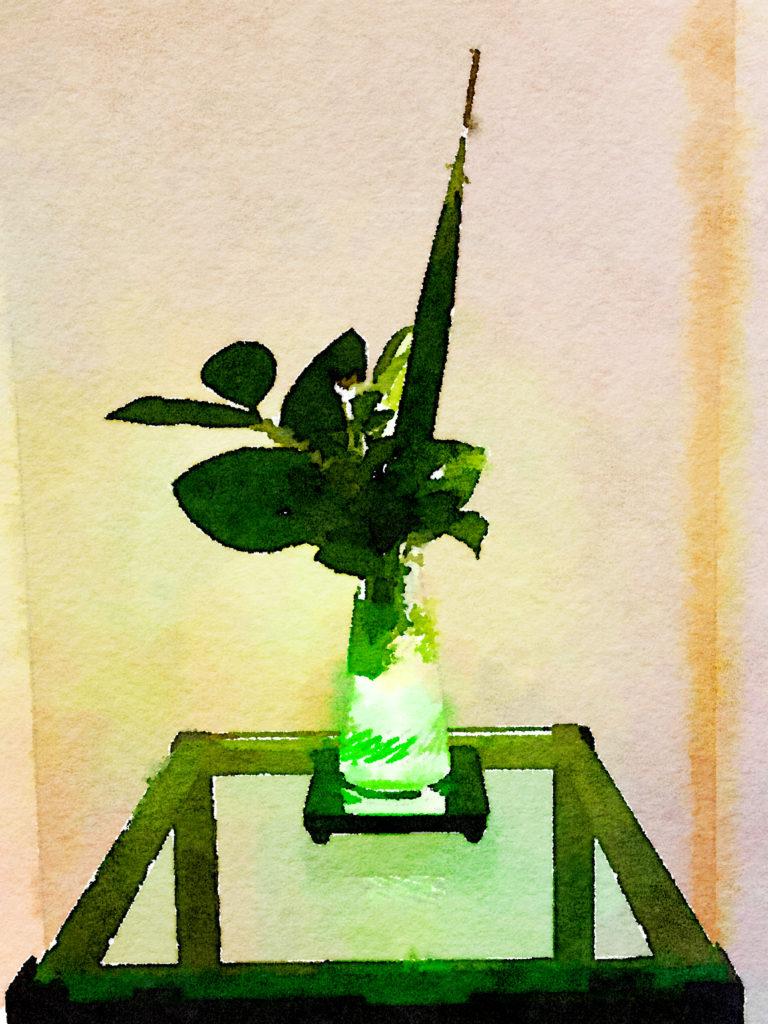 Braiden Blossoms Website Week Thirty-Nine: Green Leaves in a Triangular Vase