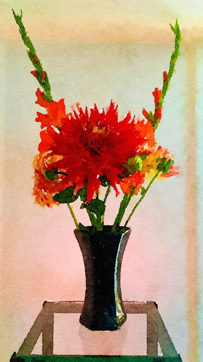 Braiden Blossoms Website Week Thirty-Nine: Orange Gladiolas and Giant Dahlia