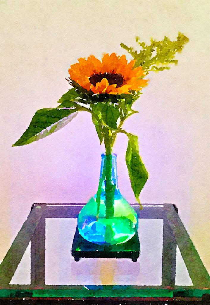 Braiden Blossoms Website Week Thirty-Nine: Single Sunflower in a Blue Buddha Vase