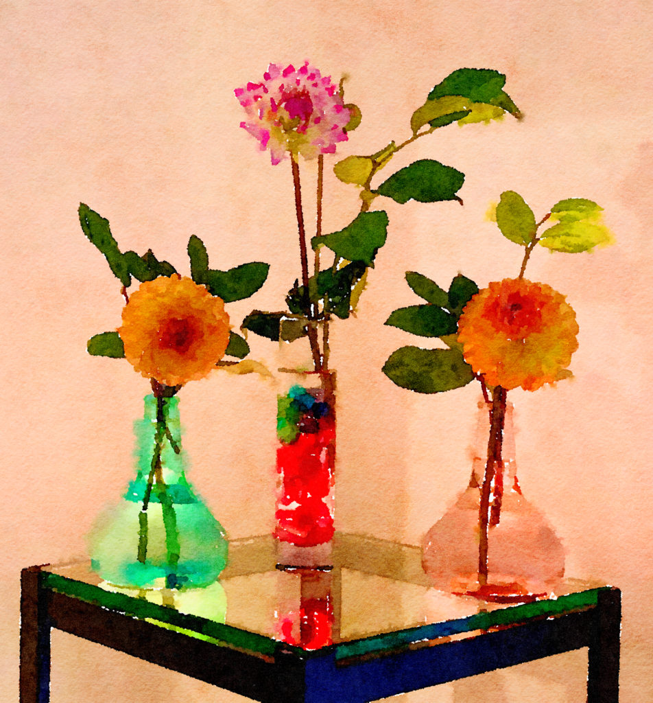 Braiden Blossoms Website Week Forty-Five: Single Dahlias in Two Buddha Vases and Clear Glass Vase