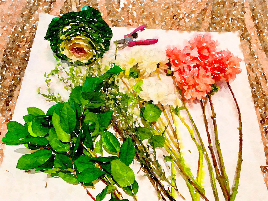 Braiden Blossoms Website Week Forty-Four: Fresh Pike Place Market Flowers Laid in a Row in Waterlogue