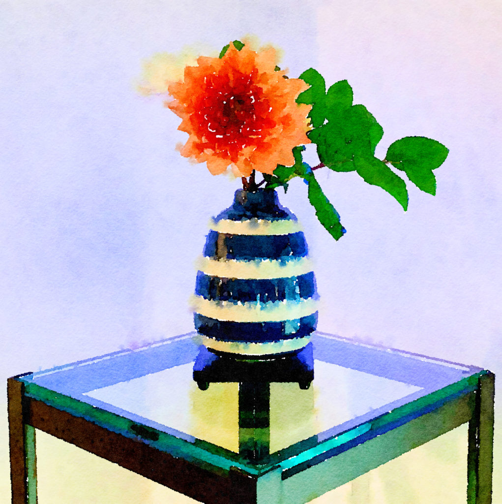 Braiden Blossoms Website Week Forty-Four: Orange Dahlia in a Striped Vase