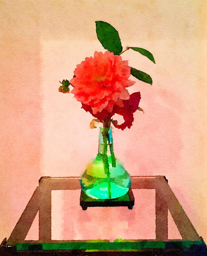 Braiden Blossoms Website Week Forty-Three: Single Salmon Dahlia in a Green Buddha Vase