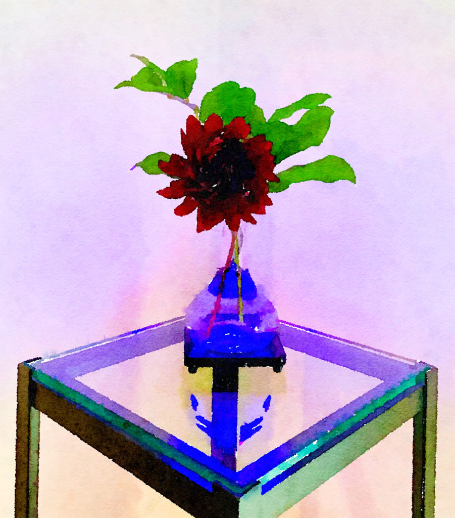 Braiden Blossoms Website Week Forty-Two: Black Dahlia in a Blue Buddha Vase