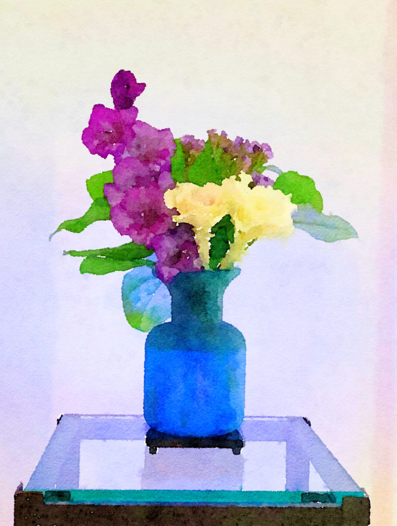Braiden Blossoms Website Week Forty-Two: White Cabbage Flower and Purple Gladiolas in a Blue Vase
